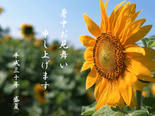 18_natsu